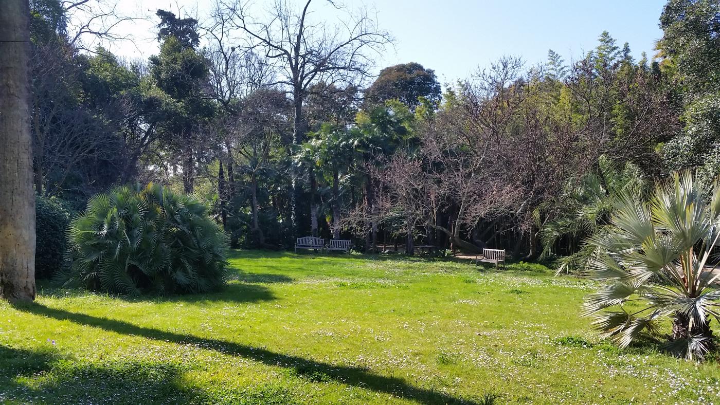 magnifique jardin paysager aux essences rares