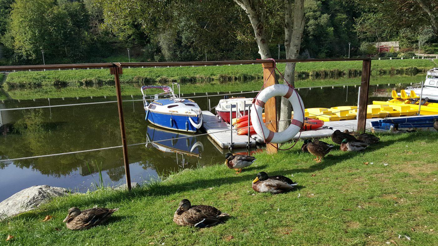 Les bateaux à pédaliers nous attentent ainsi que les canards (c)MF Souchet