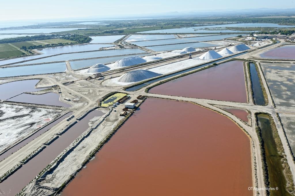 Les eaux pourpres du Salin(c)OT Aigues-Mortes
