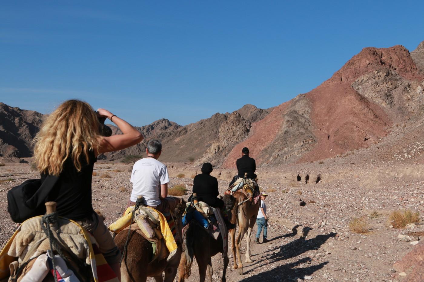 Ballade en chameau (c)B.Charton