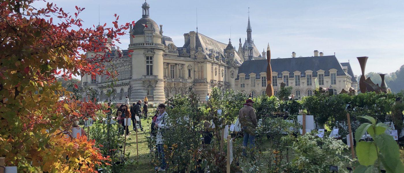 Chantilly et ses couleurs d'automne