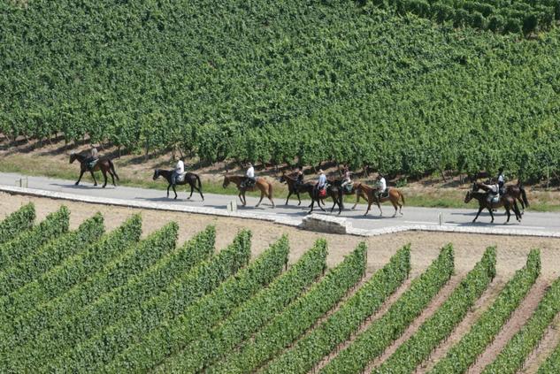 Randonnée en Alsace(c)CRTE-Alsace