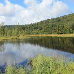 Les Vosges entre trois eaux